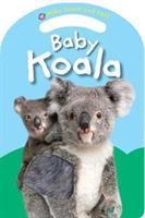 Baby Koala