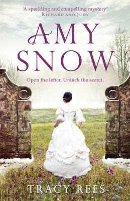 Cover image for Amy Snow