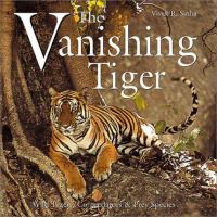 The Vanishing Tiger