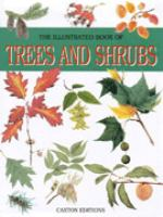 The Illustrated Book of Trees and Shrubs