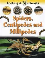 Spiders, Centipedes & Millipedes