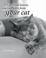 10 Spiritual Lessons You Can Learn From your Cat