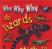 Why Why Why Do Lizards Stick to the Walls?