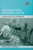 Technological Change and Economic Catch-up