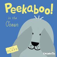 Peekaboo! In the Ocean