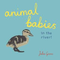 Animal Babies in the River!