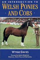 An Introduction To Welsh Ponies And Cobs