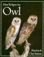 How to Spot An Owl