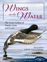 Wings on the Water