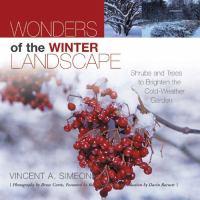 Wonders of the Winter Landscape