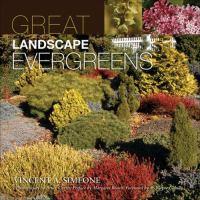 Great Landscape Evergreens
