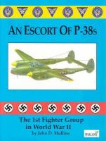 An Escort of P-38s