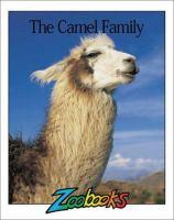 The Camel Family