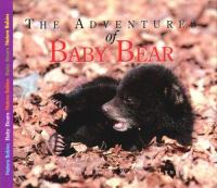 The Adventures of Baby Bear