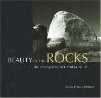 Beauty in the Rocks
