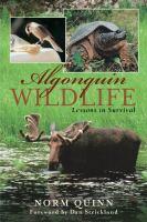 Algonquin Wildlife