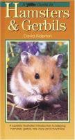 A PetLove Guide to Hamsters & Gerbils