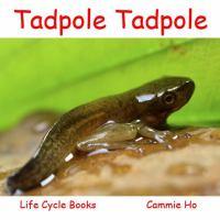 Tadpole, Tadpole