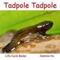 Tadpole Tadpole