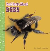 Fast facts about bees