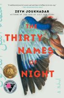 The thirty names of night : a novel291 pages ; 24 cm