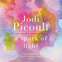 A Spark of Light(Unabridged,CDs)