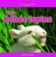 Les bebes lapins
