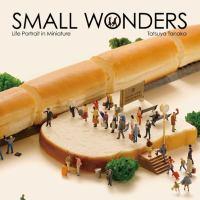 Small Wonders : Life Portrait in Miniature