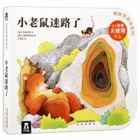 奇妙洞洞书系列第4辑:小老鼠迷路了  (Text In Simplified Chinese)