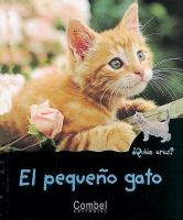 El pequeno gato