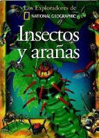 Insectos y ananas