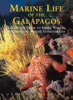 Marine Life of the Galápagos