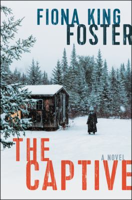 Cover image for The captive : a novel