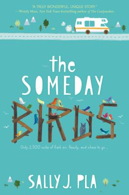 Cover image for The someday birds