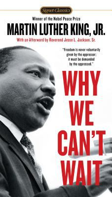 Cover image for Why we can't wait
