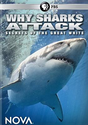 Cover image for Why sharks attack [DVD]