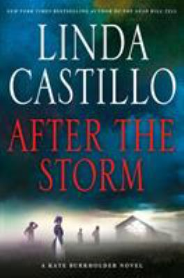 Cover image for After the storm
