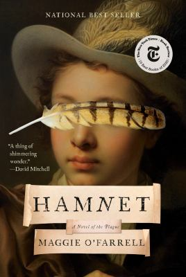 cover of Hamnet by Maggie O'Farrell