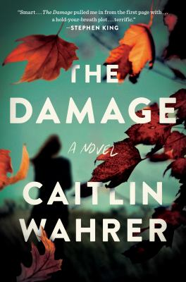 cover of The Damage by Caitlin Wahrer