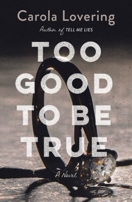 cover of Too Good to Be True by Carola Lovering