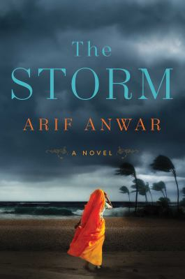 The storm : a novel - Cover