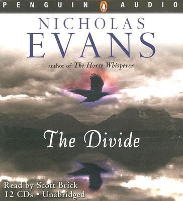 Cover image for The divide