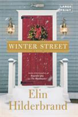 Cover image for Winter street : a novel