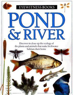Cover image for Pond & river