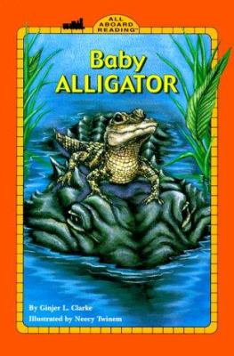 Cover image for Baby alligator