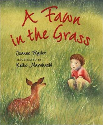 Cover image for A fawn in the grass