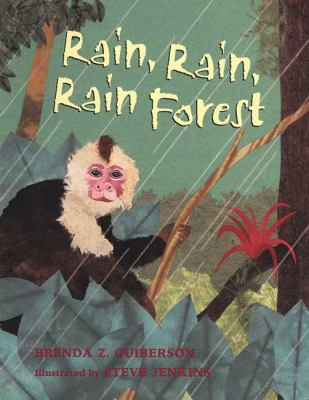 Cover image for Rain, rain, rain forest