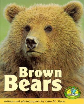 Cover image for Brown bears