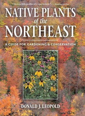 Cover image for Native plants of the northeast : a guide for gardening & conservation