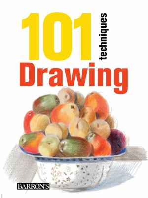 Cover image for 101 techniques : drawing